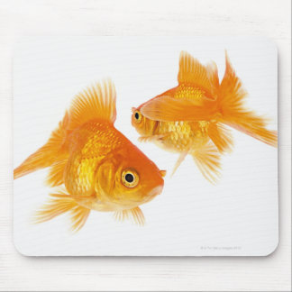 Two Goldfish Crossing Each Other Mouse Pad