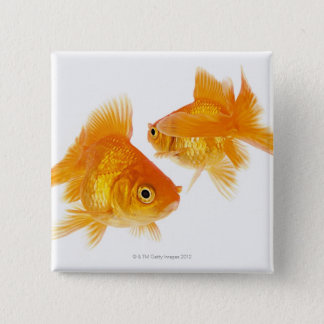 Two Goldfish Crossing Each Other Pinback Button
