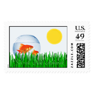 Two Goldfish Sun Spring Equinox Tall Grass Stamps
