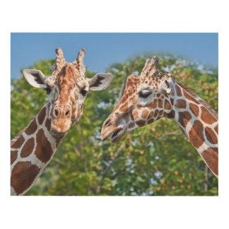 Two Gossiping Giraffes Panel Wall Art