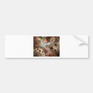 Two Gray Cats in Space Before a Nebula Bumper Sticker