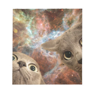 Two Gray Cats in Space Before a Nebula Notepad