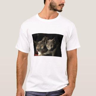 Two Gray Cats Men's Basic T-Shirt