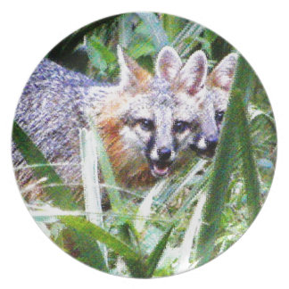 Two Gray Fox photograph Plate