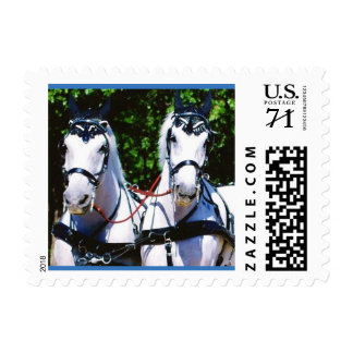 Two Gray Percherons Postage