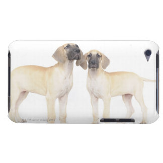 Two Great Danes Barely There iPod Cover