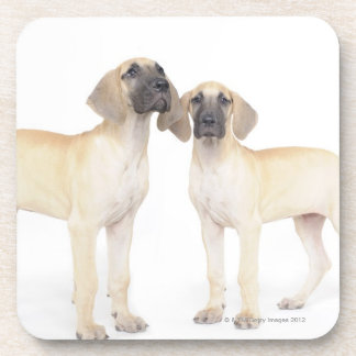 Two Great Danes Drink Coaster