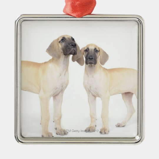 Two Great Danes Metal Ornament