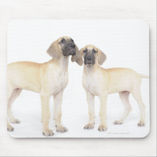 Two Great Danes Mouse Pad