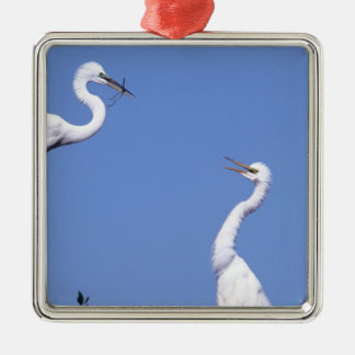 Two Great Egrets Ardea alba in a courtship Christmas Ornament