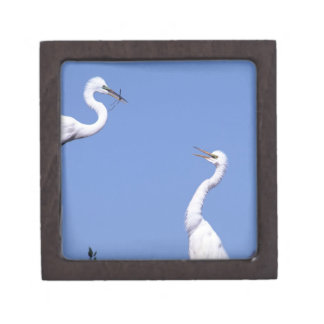 Two Great Egrets (Ardea alba) in a courtship Premium Keepsake Box