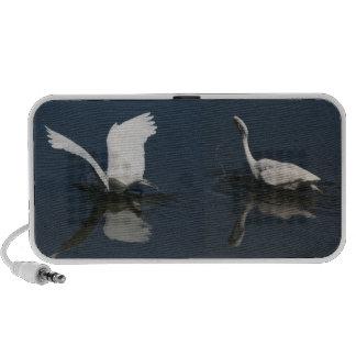 Two Great Egrets Fishing Doodle Speaker
