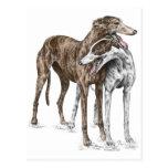 Two Greyhound Friends Dog Art Postcards