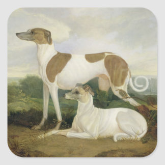 Two Greyhounds in a Landscape (oil on canvas) Square Sticker