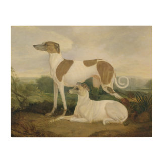 Two Greyhounds in a Landscape (oil on canvas) Wood Print