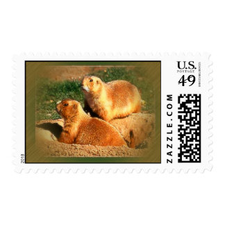 Two Groundhogs Coming Out On Groundhogs Day Postage