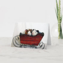 Two Guinea Pigs in a Sleigh, Christmas Holiday Card