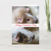 Two guinea pigs Valentine's Day card