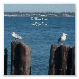 """Two Gulls """"To Thine Own Self Be True"""" Poster at Zazzle.com/lizardmarsh"""
