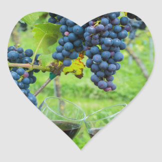 Two hands toasting with red wine near blue grapes heart sticker