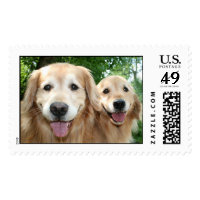 Two Happy Golden Retrievers Outside Stamps
