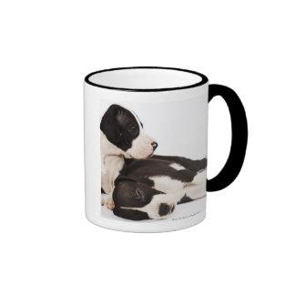 Two Harlequin Great Dane puppies on white Coffee Mug