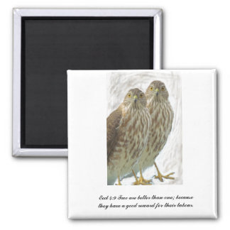 Two Hawks Birds Eccl 4:9 Scripture Christian 2 Inch Square Magnet