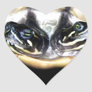 Two-Headed Turtle Heart Sticker