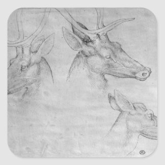 Two heads of stags, one head of a doe square sticker