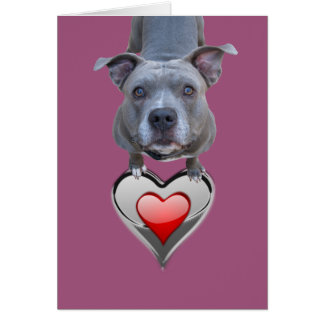 Two Hearts Pitbull Valentine's Day Card