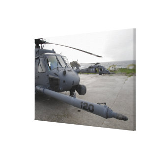 Two HH-60G Pave Hawks Canvas Print