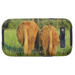 Two Highland Cattle Rears in Upper Austria Samsung Galaxy SIII Covers