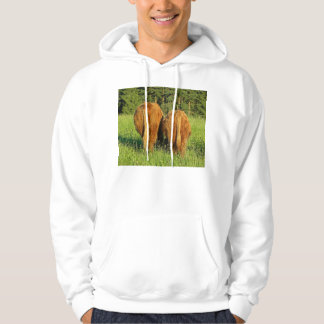 Two Highland Cattle Rears in Upper Austria Hooded Pullover