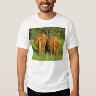 Two Highland Cattle Rears in Upper Austria Shirt