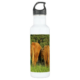 Two Highland Cattle Rears in Upper Austria Stainless Steel Water Bottle