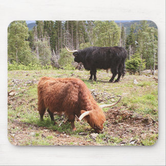 Two highland cattle, Scotland Mouse Pad