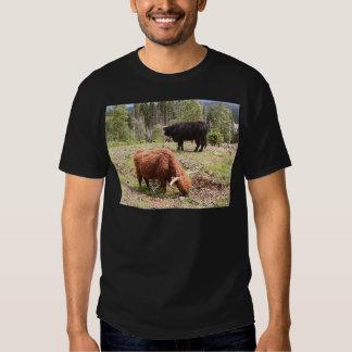 Two highland cattle, Scotland T-shirt
