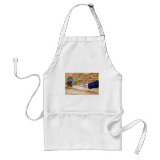 Two homeless kitten playing with a stick adult apron