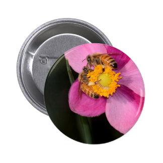 Two Honey Bees on a Pink Flower Pinback Button