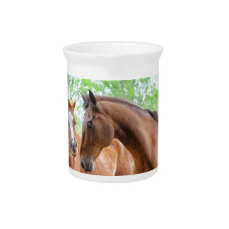 Two horse friends drink pitcher