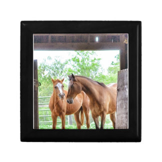 Two horse friends keepsake box
