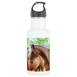 Two horse friends stainless steel water bottle
