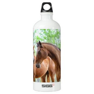 Two horse friends water bottle