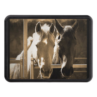 Two Horse Hitch Cover