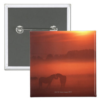 Two horses at sunset 2 inch square button
