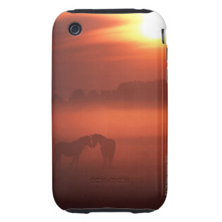 Two horses at sunset iPhone 3 tough case