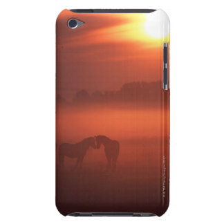 Two horses at sunset iPod touch cover