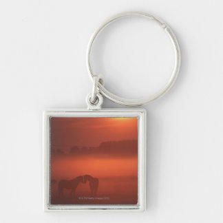 Two horses at sunset keychain