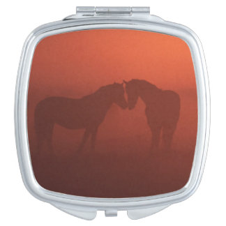 Two horses at sunset mirror for makeup