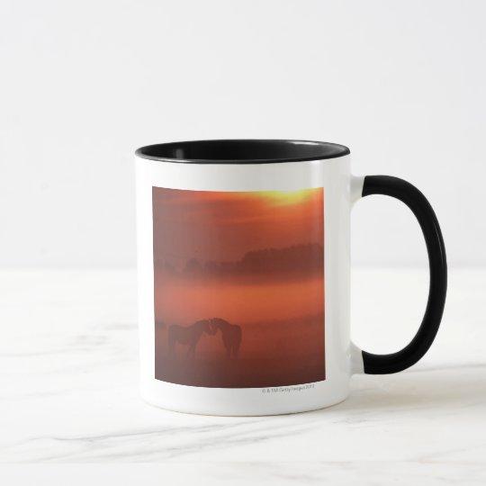 Two horses at sunset mug
